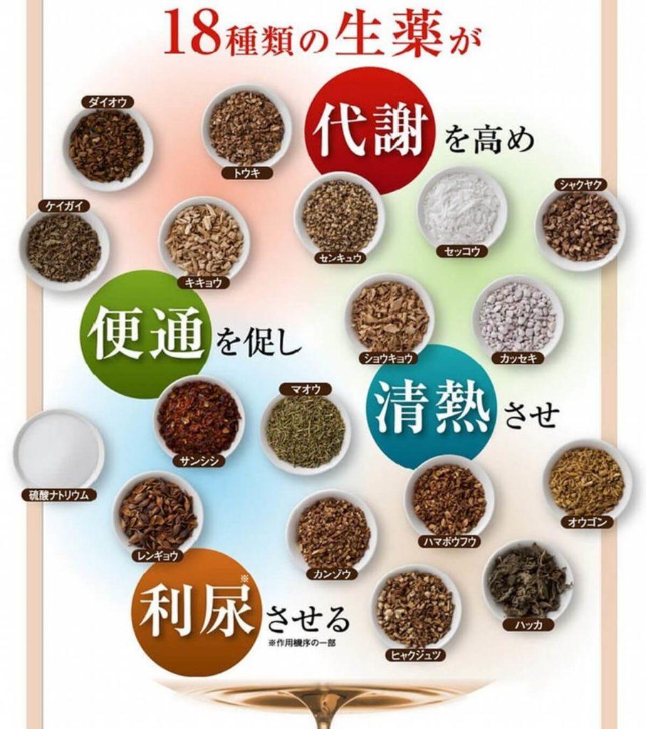 生漢煎「防風通聖散」の漢方薬の効果