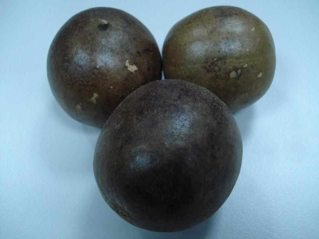 羅漢果顆粒の実