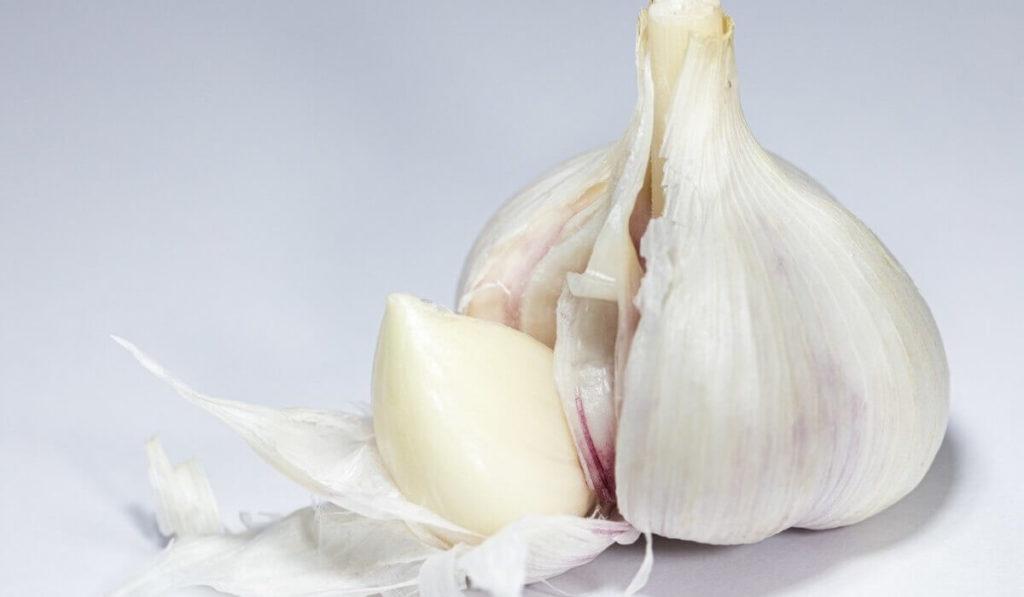 更年期障害を改善する食事