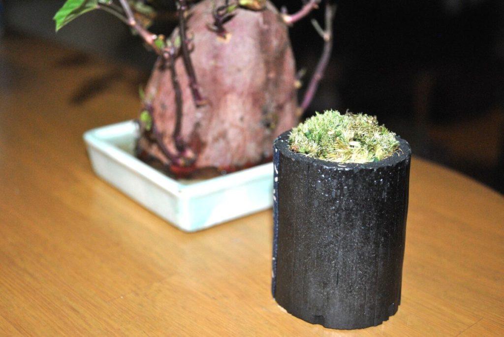 飾り竹炭がちょっと小さめなので、1つでは寂しい