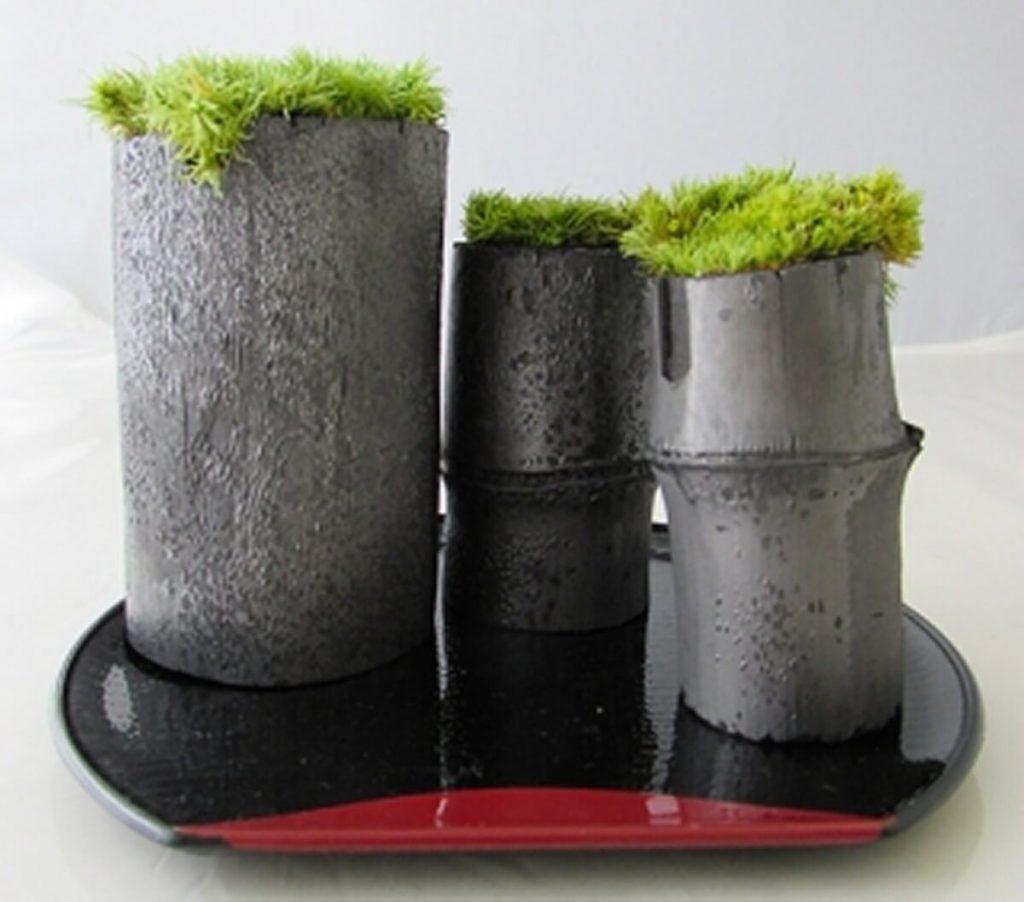 苔庭セット